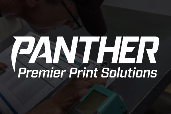 Panther Rebrand and Website